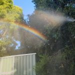 A rainbow forms in the fine spray from the hose
